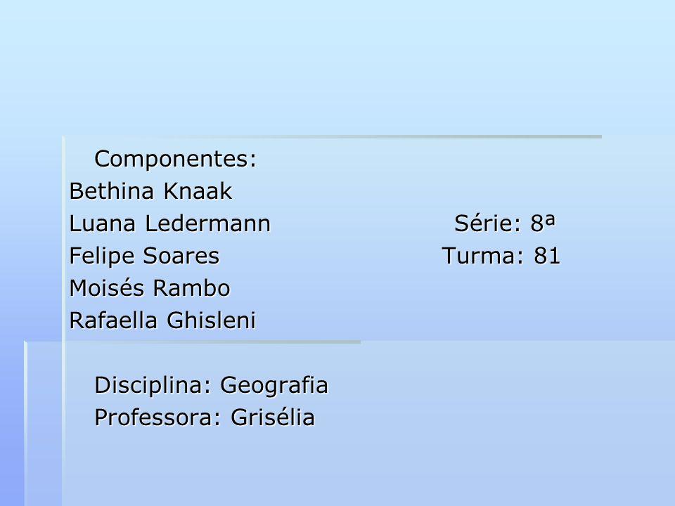 Componentes:Bethina Knaak. Luana Ledermann Série: 8ª. Felipe Soares Turma: 81.