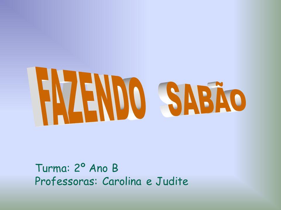 FAZENDO SABÃO Turma: 2º Ano B Professoras: Carolina e Judite