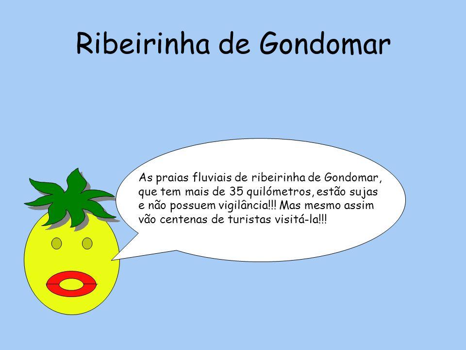 Ribeirinha de Gondomar