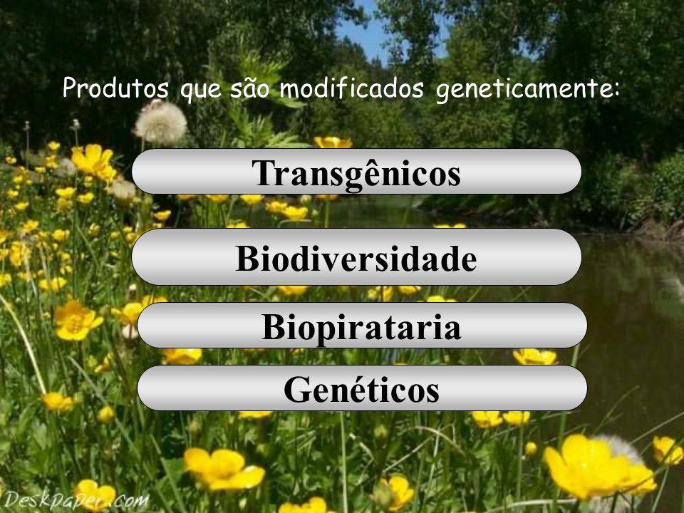 Produtos que são modificados geneticamente: