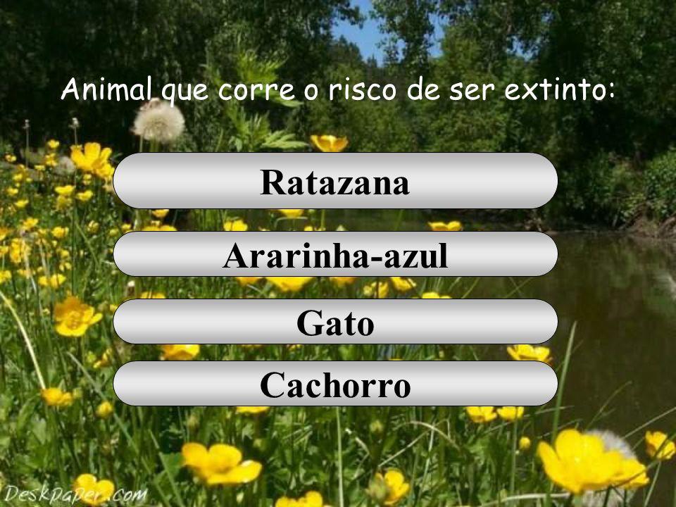 Animal que corre o risco de ser extinto: