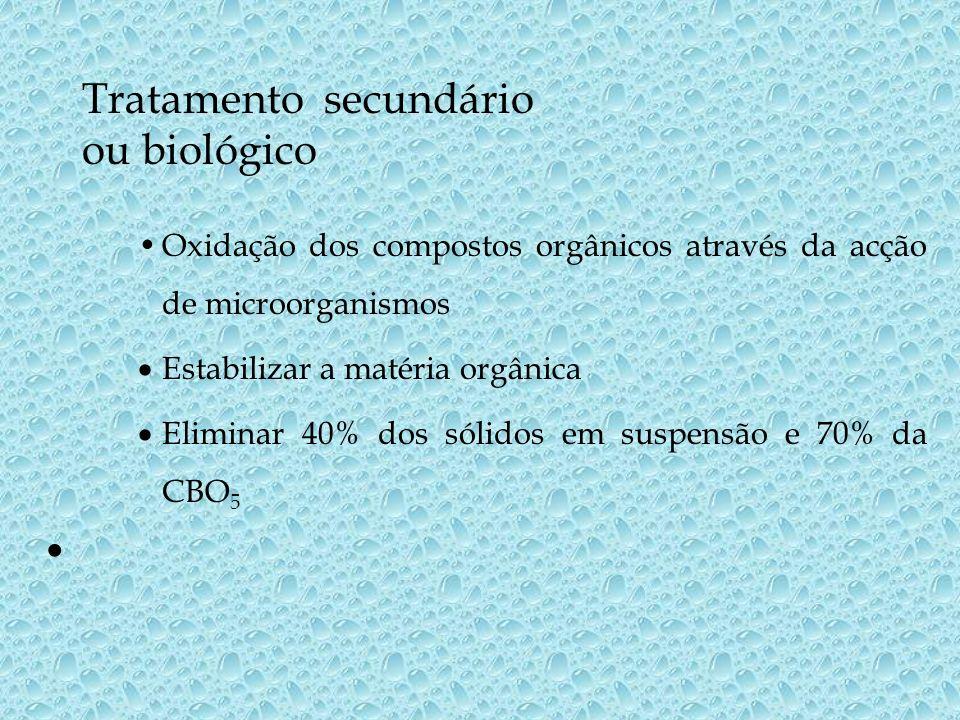 Tratamento secundário ou biológico