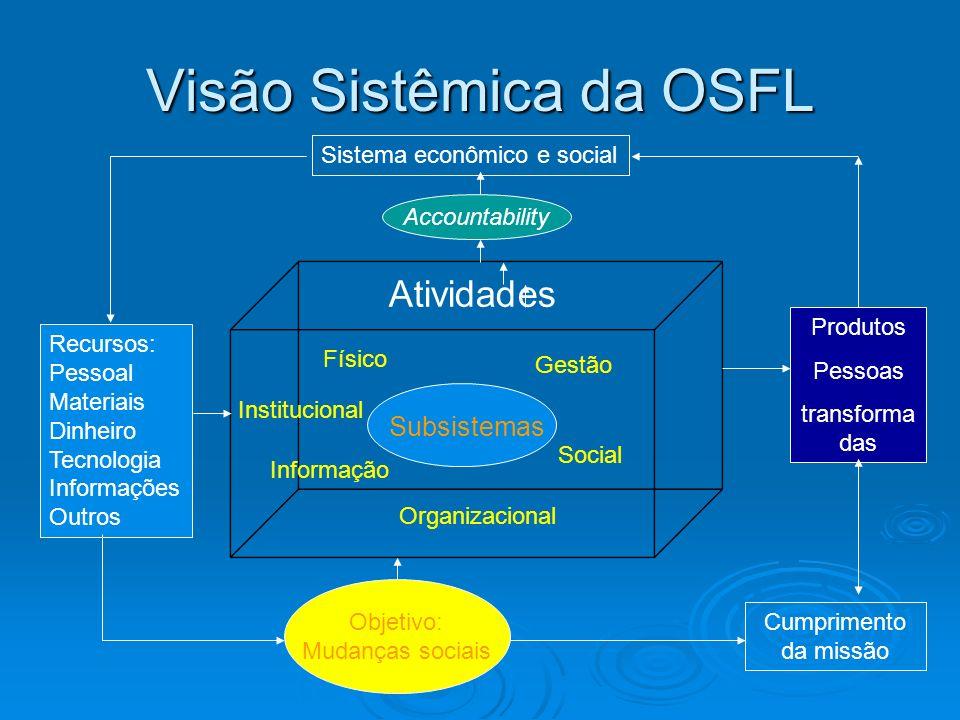 Visão Sistêmica da OSFL