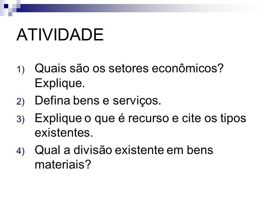 ATIVIDADE Quais são os setores econômicos Explique.
