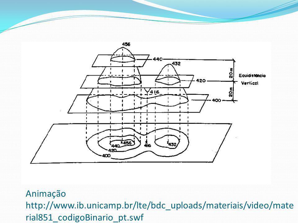 Animação http://www. ib. unicamp