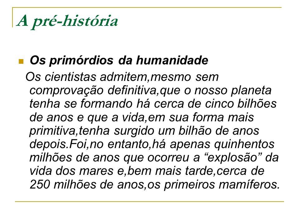 A pré-história Os primórdios da humanidade