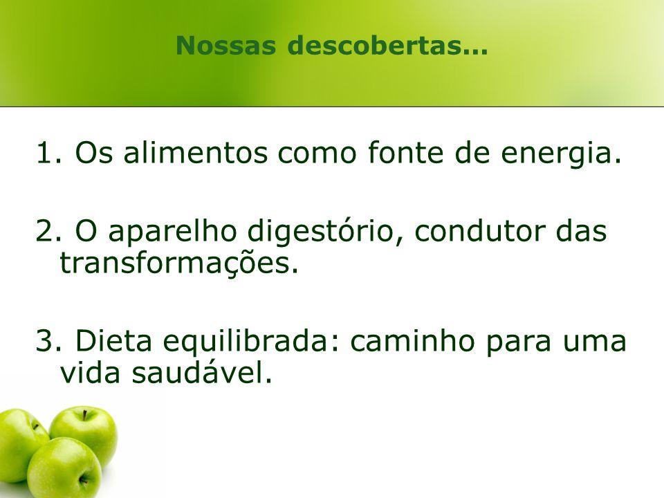 1. Os alimentos como fonte de energia.