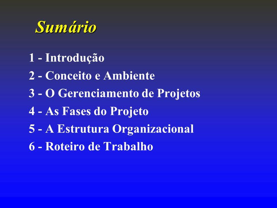 Sumário 1 - Introdução 2 - Conceito e Ambiente