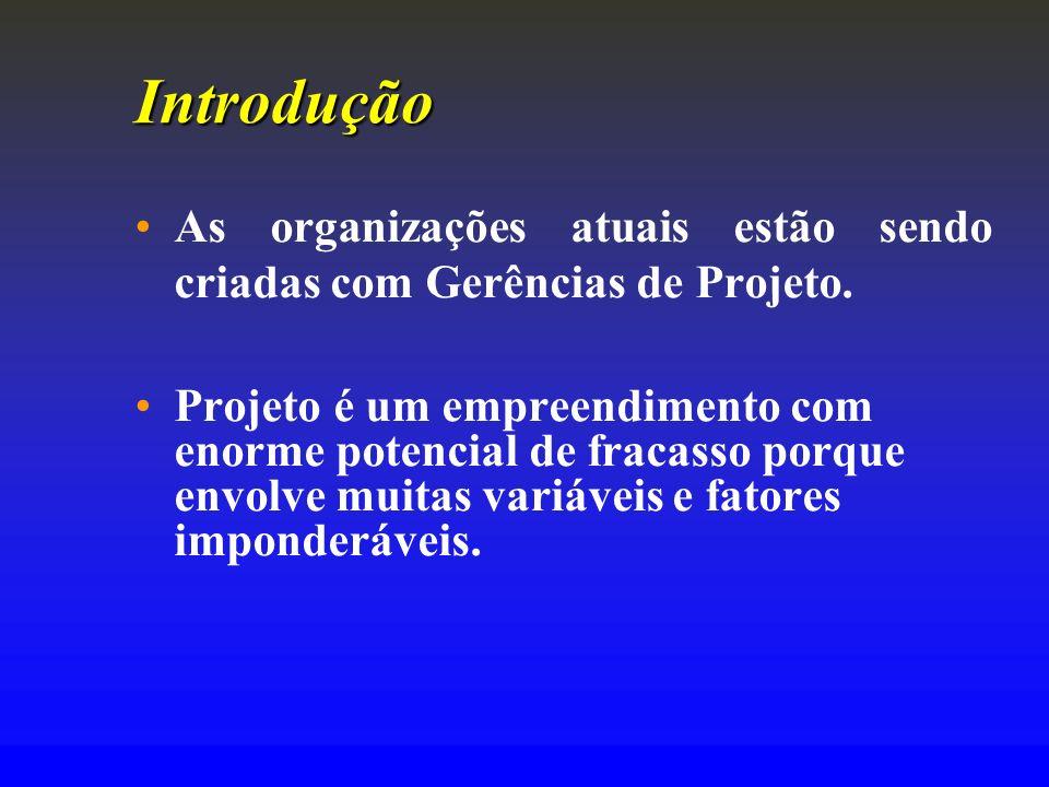 Introdução As organizações atuais estão sendo criadas com Gerências de Projeto.