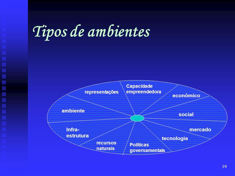 Tipos de ambientes econômico ambiente social Infra-estrutura mercado