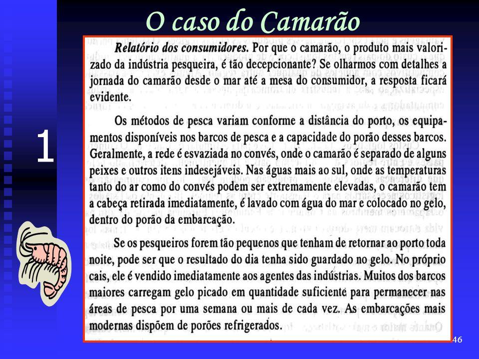 O caso do Camarão 1