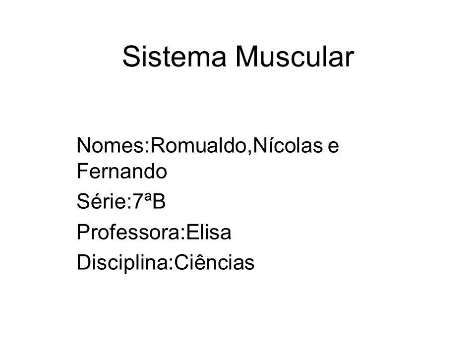 Sistema Muscular Nomes:Romualdo,Nícolas e Fernando Série:7ªB