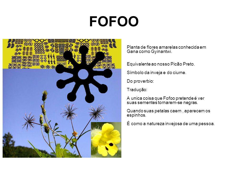 FOFOO
