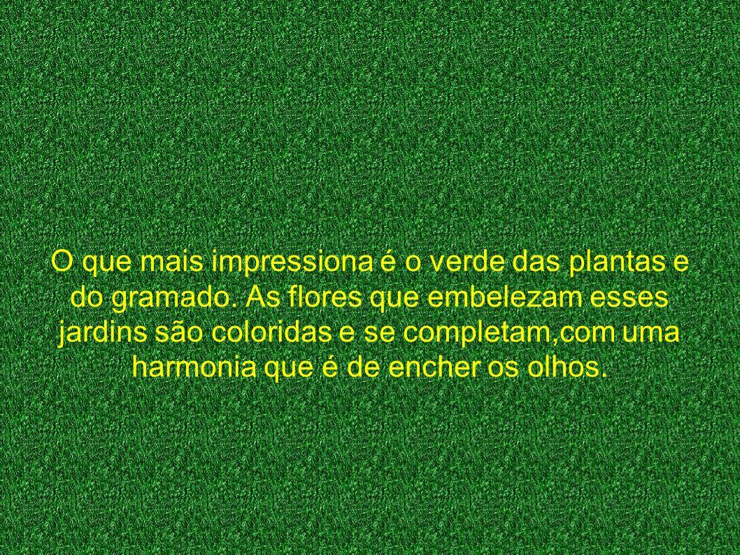 O que mais impressiona é o verde das plantas e do gramado