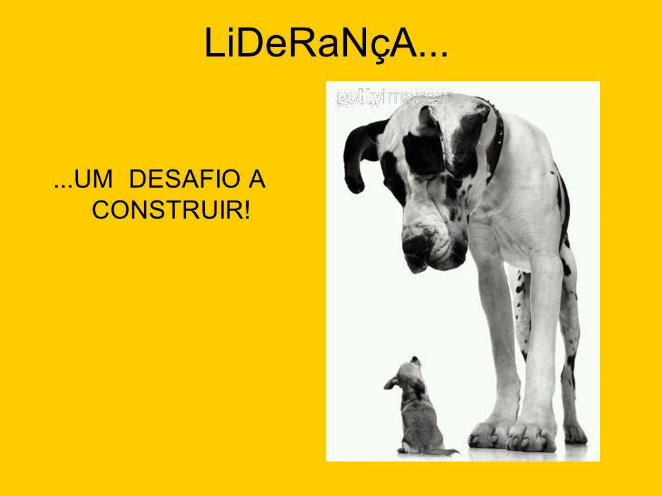 LiDeRaNçA... ...UM DESAFIO A CONSTRUIR!