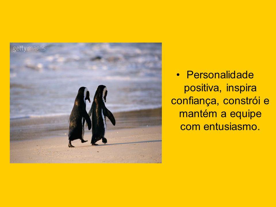 Personalidade positiva, inspira confiança, constrói e mantém a equipe com entusiasmo.