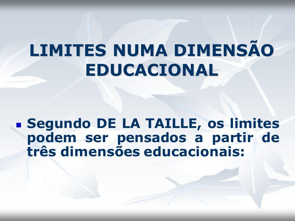 LIMITES NUMA DIMENSÃO EDUCACIONAL