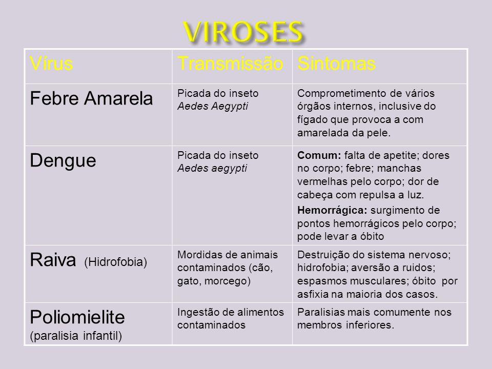 VIROSES Vírus Transmissão Sintomas Febre Amarela Dengue