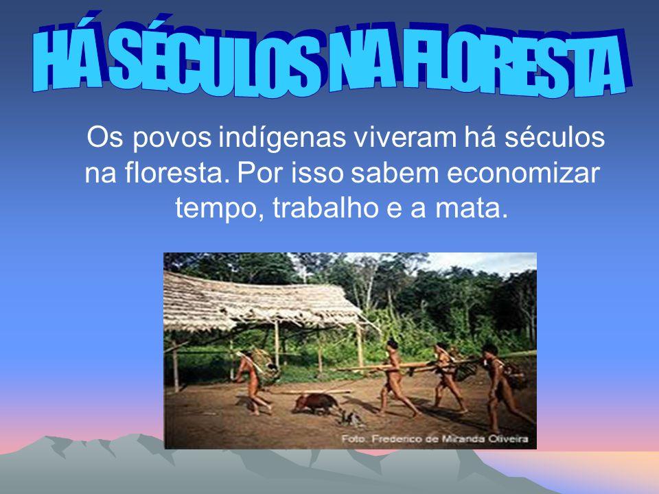 HÁ SÉCULOS NA FLORESTA Os povos indígenas viveram há séculos na floresta.