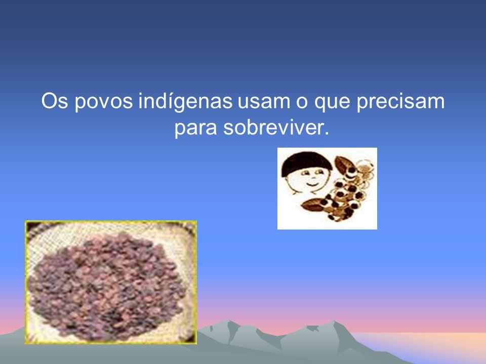 Os povos indígenas usam o que precisam para sobreviver.
