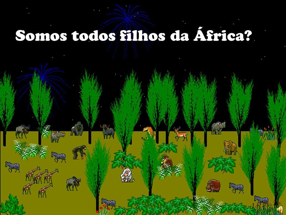 Somos todos filhos da África