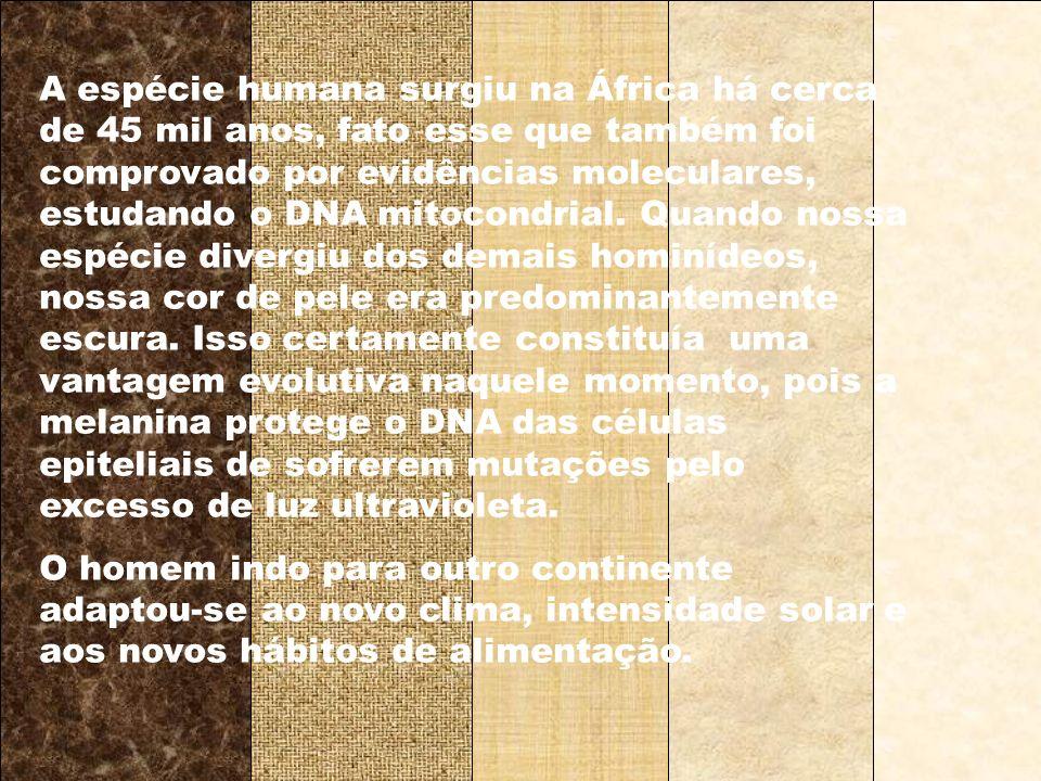 A espécie humana surgiu na África há cerca de 45 mil anos, fato esse que também foi comprovado por evidências moleculares, estudando o DNA mitocondrial. Quando nossa espécie divergiu dos demais hominídeos, nossa cor de pele era predominantemente escura. Isso certamente constituía uma vantagem evolutiva naquele momento, pois a melanina protege o DNA das células epiteliais de sofrerem mutações pelo excesso de luz ultravioleta.