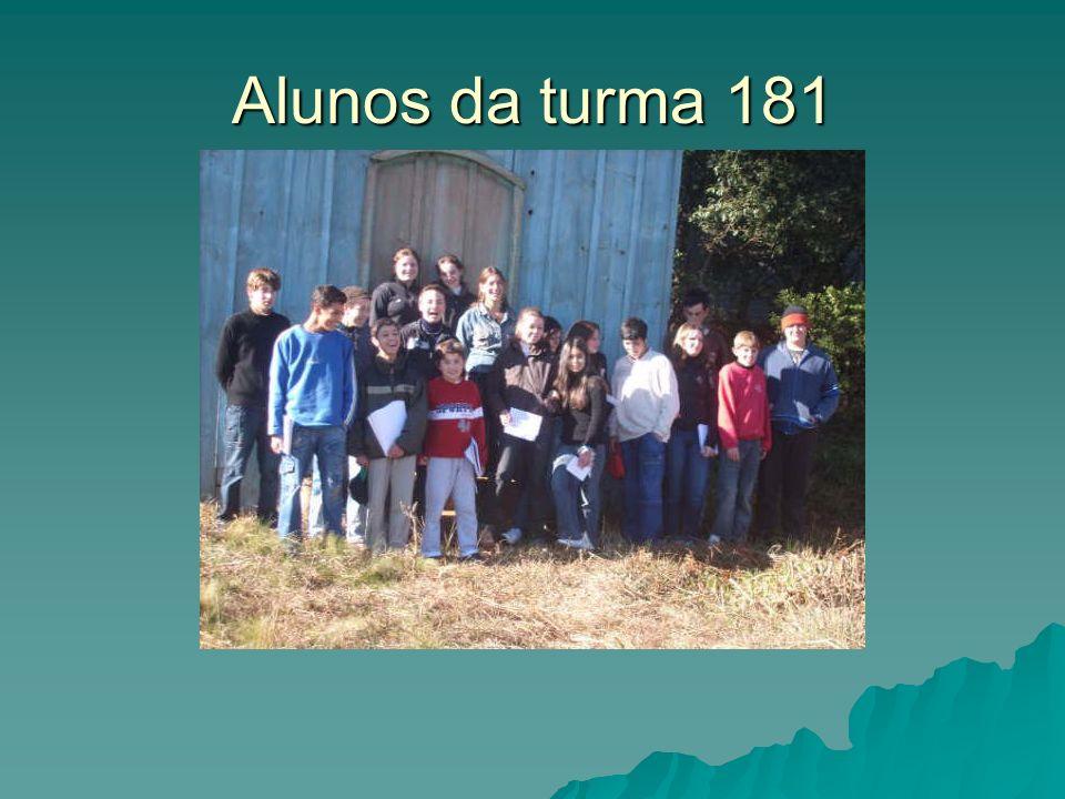 Alunos da turma 181