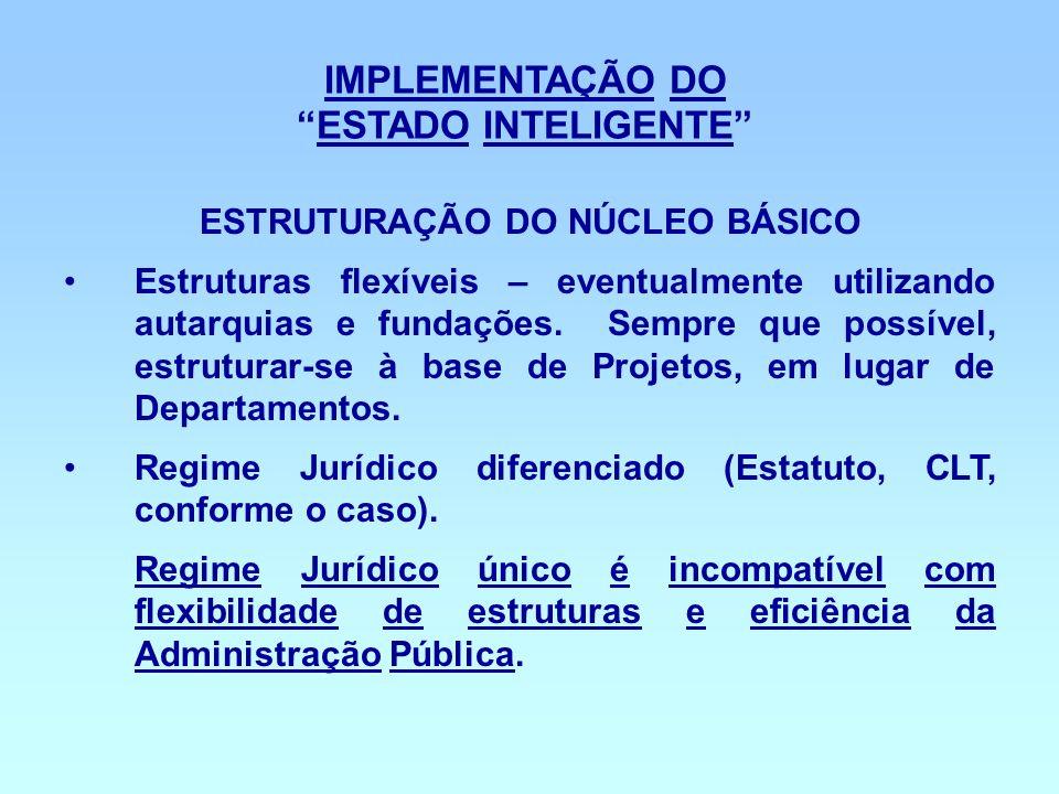 IMPLEMENTAÇÃO DO ESTADO INTELIGENTE ESTRUTURAÇÃO DO NÚCLEO BÁSICO