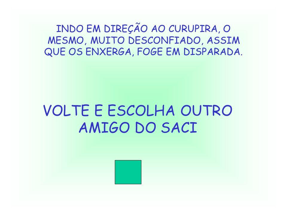 VOLTE E ESCOLHA OUTRO AMIGO DO SACI
