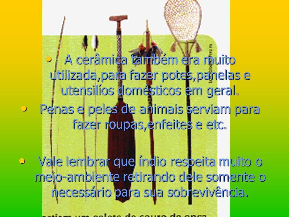 Penas e peles de animais serviam para fazer roupas,enfeites e etc.
