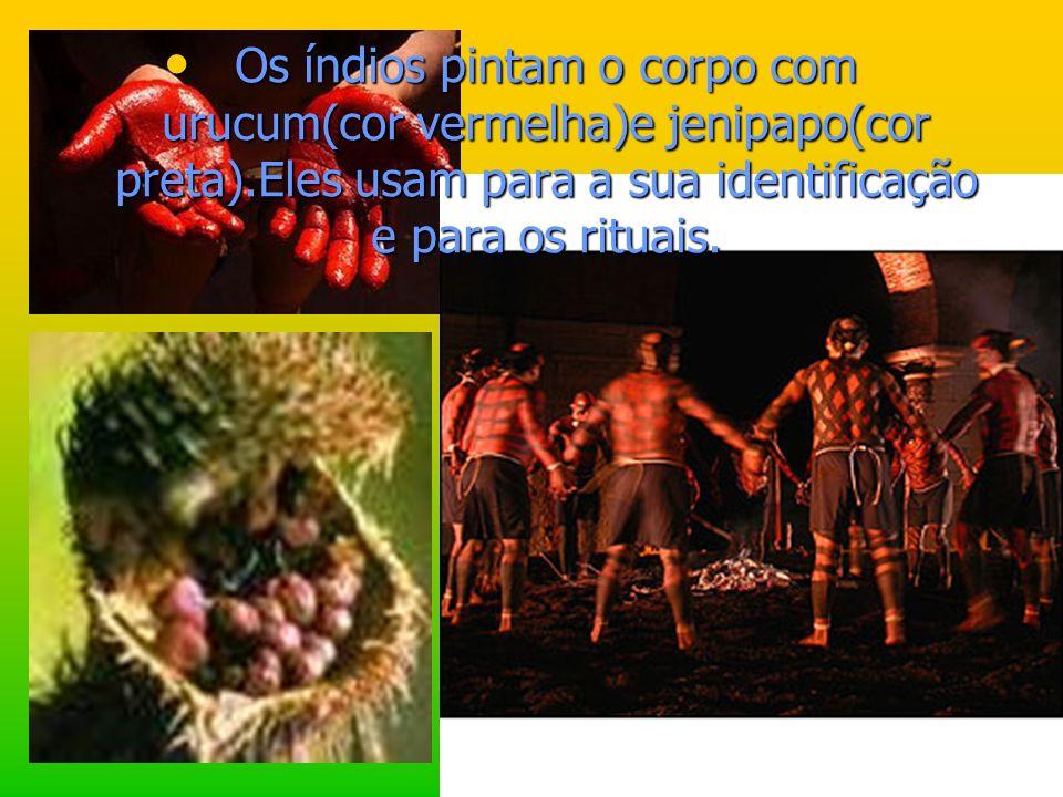 Os índios pintam o corpo com urucum(cor vermelha)e jenipapo(cor preta)