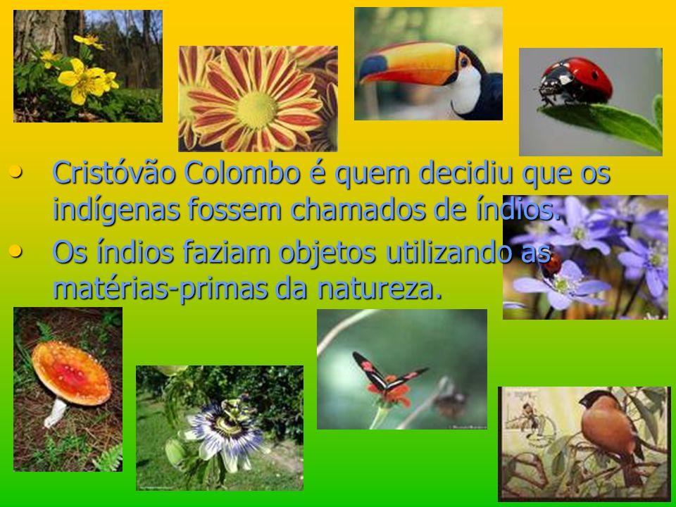 Cristóvão Colombo é quem decidiu que os indígenas fossem chamados de índios.