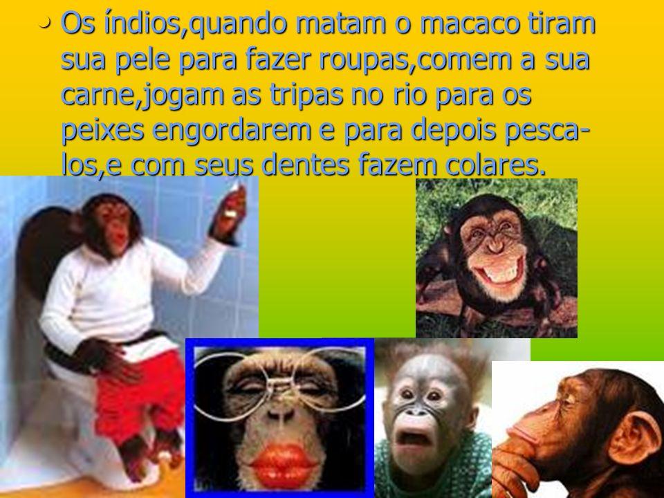 Os índios,quando matam o macaco tiram sua pele para fazer roupas,comem a sua carne,jogam as tripas no rio para os peixes engordarem e para depois pesca-los,e com seus dentes fazem colares.