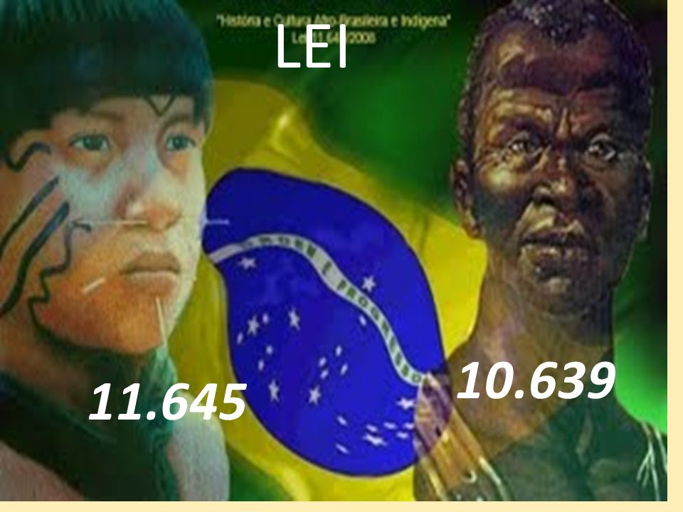 LEI 10.639 11.645