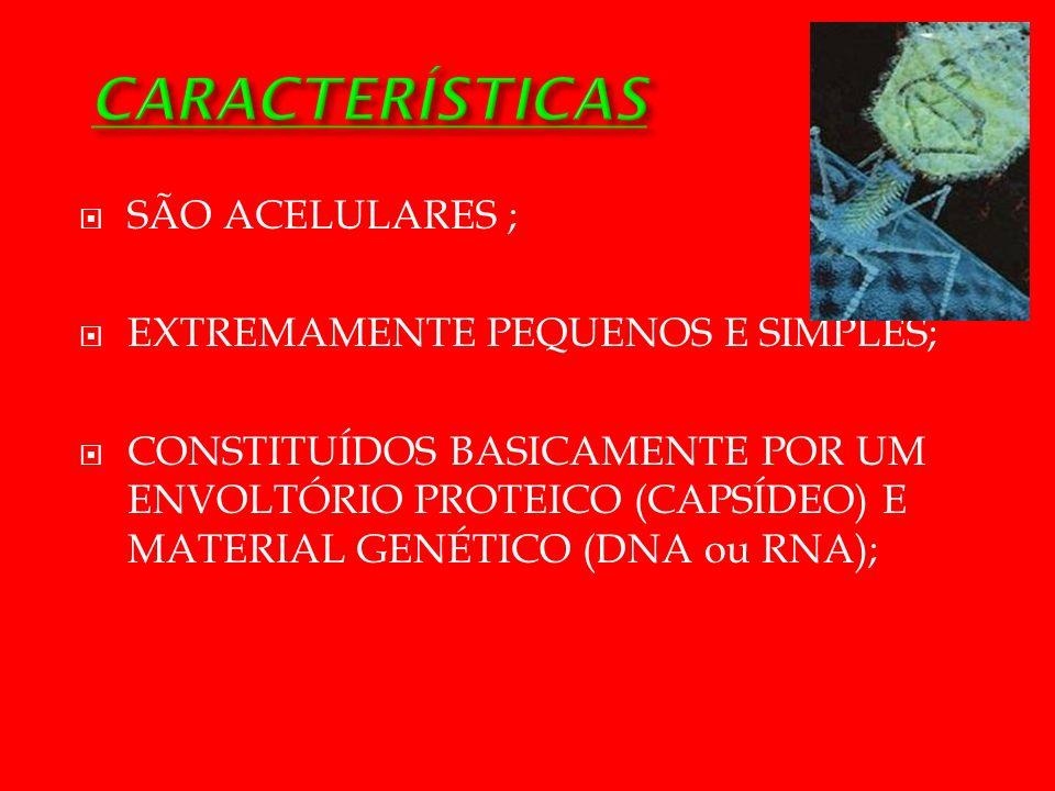 CARACTERÍSTICAS SÃO ACELULARES ; EXTREMAMENTE PEQUENOS E SIMPLES;