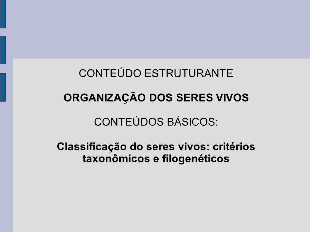 CONTEÚDO ESTRUTURANTE ORGANIZAÇÃO DOS SERES VIVOS CONTEÚDOS BÁSICOS: