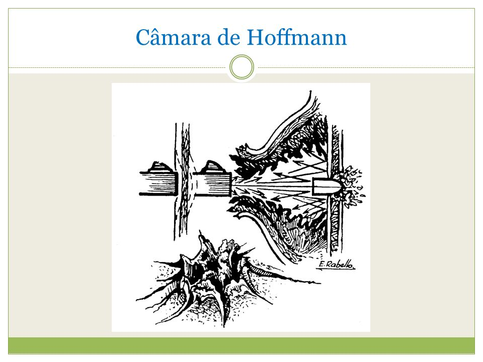 Câmara de Hoffmann