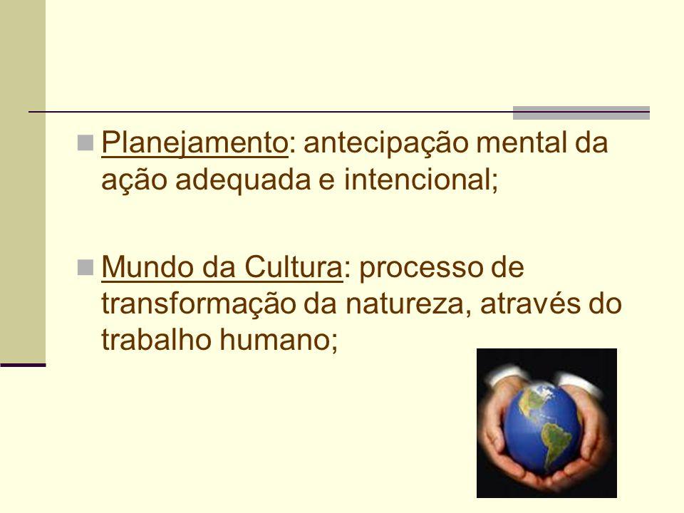 Planejamento: antecipação mental da ação adequada e intencional;