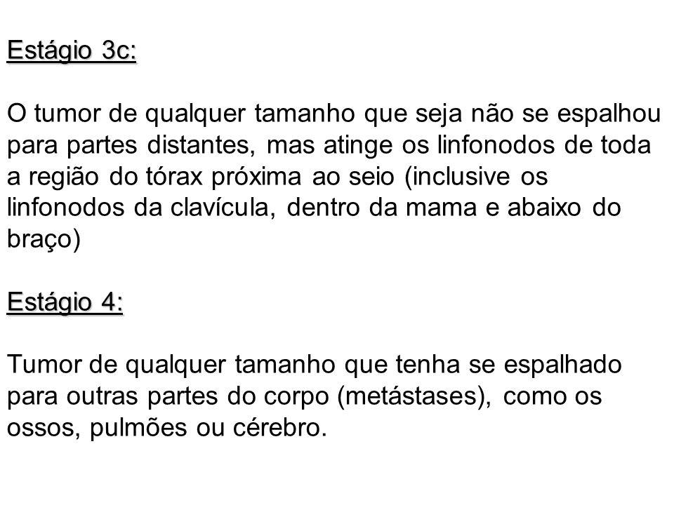 Estágio 3c:
