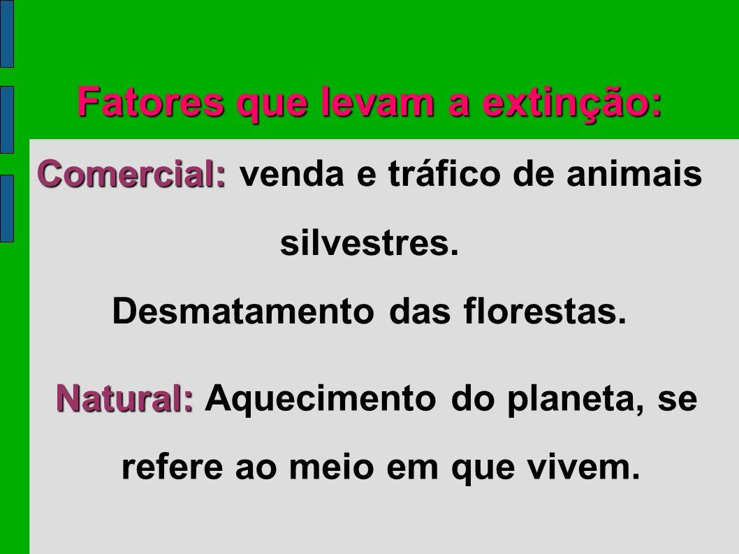 Fatores que levam a extinção:
