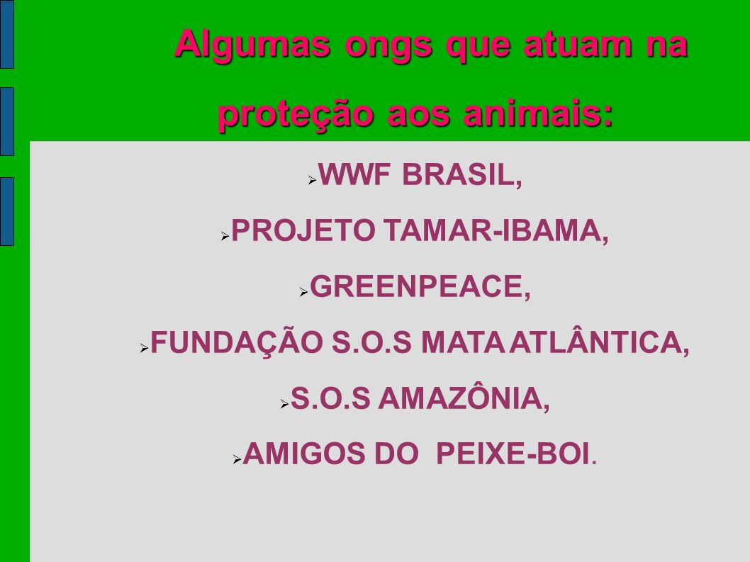 FUNDAÇÃO S.O.S MATA ATLÂNTICA,