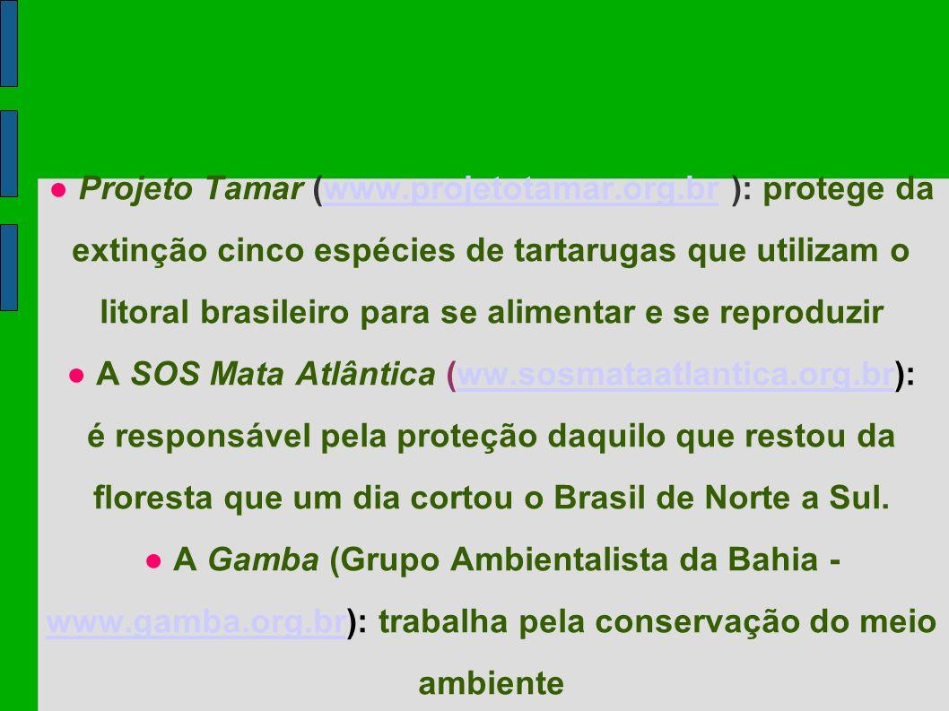 ● A SOS Mata Atlântica (ww.sosmataatlantica.org.br):