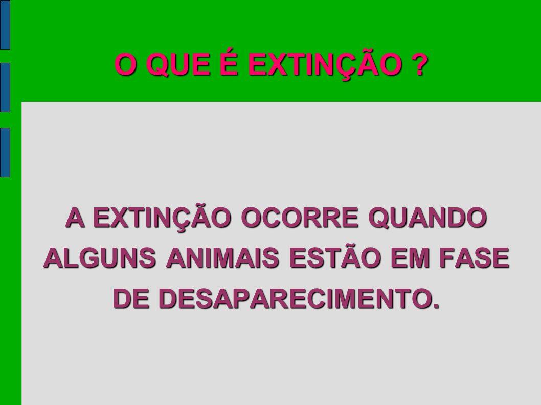 O QUE É EXTINÇÃO A EXTINÇÃO OCORRE QUANDO ALGUNS ANIMAIS ESTÃO EM FASE DE DESAPARECIMENTO.