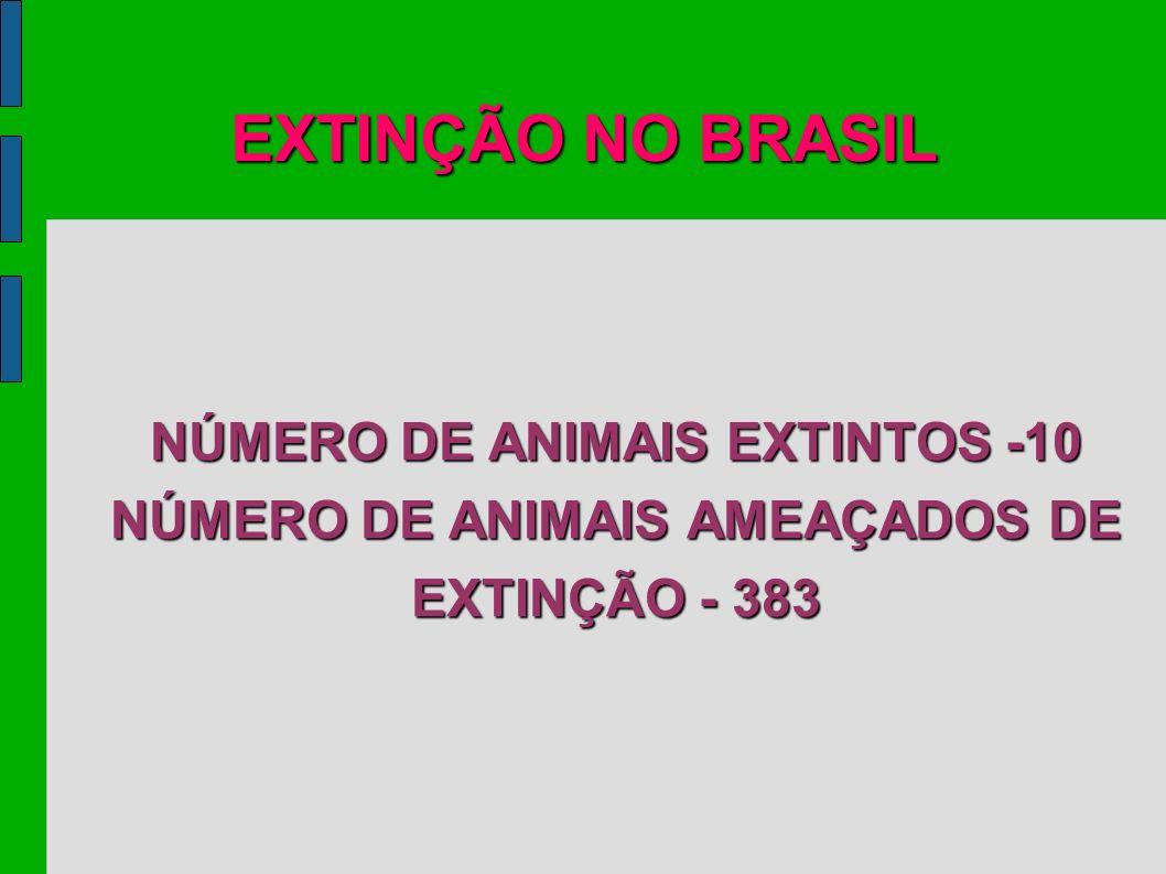EXTINÇÃO NO BRASIL NÚMERO DE ANIMAIS EXTINTOS -10