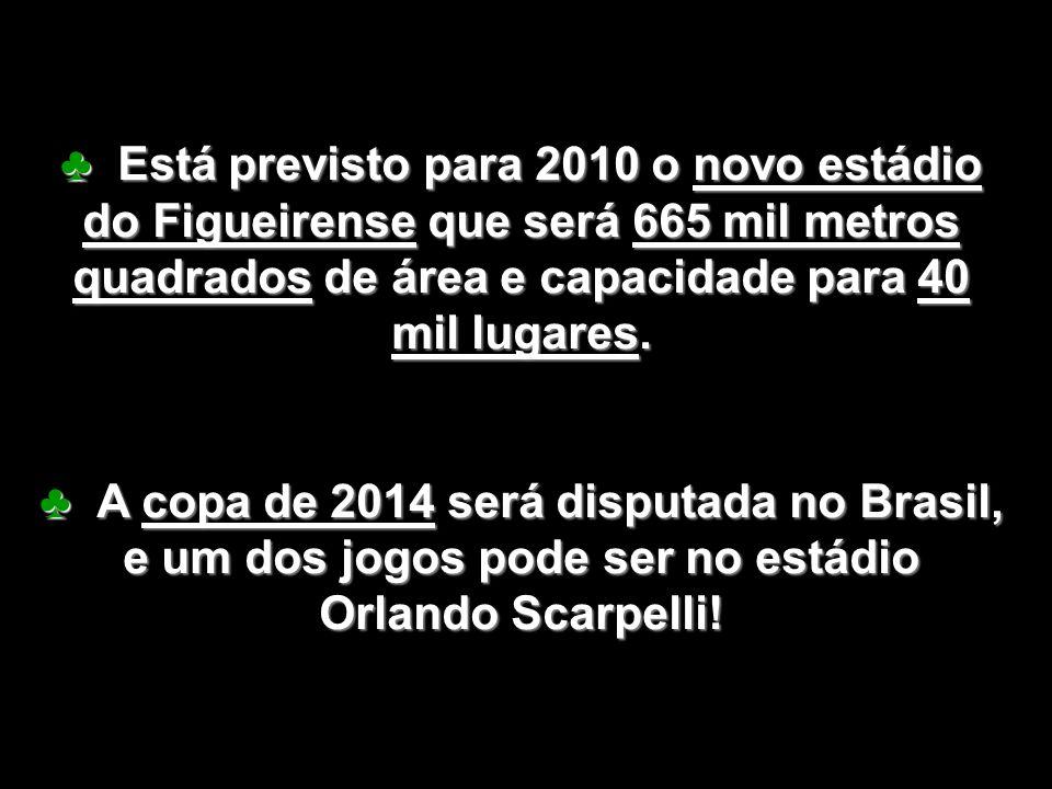 ♣ Está previsto para 2010 o novo estádio do Figueirense que será 665 mil metros quadrados de área e capacidade para 40 mil lugares.
