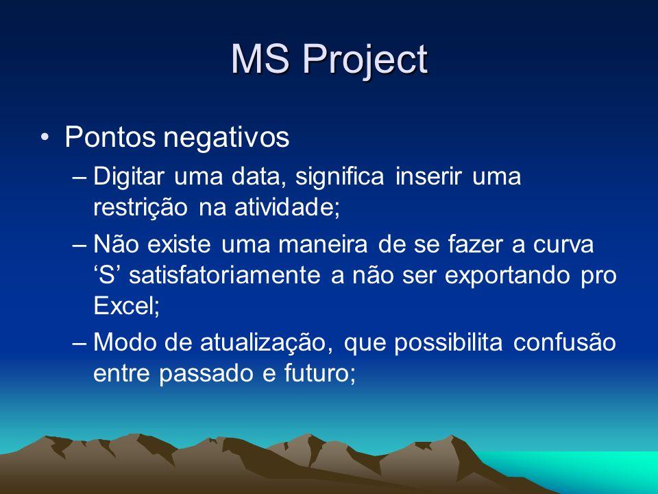MS Project Pontos negativos