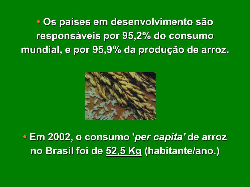 • Os países em desenvolvimento são responsáveis por 95,2% do consumo mundial, e por 95,9% da produção de arroz.