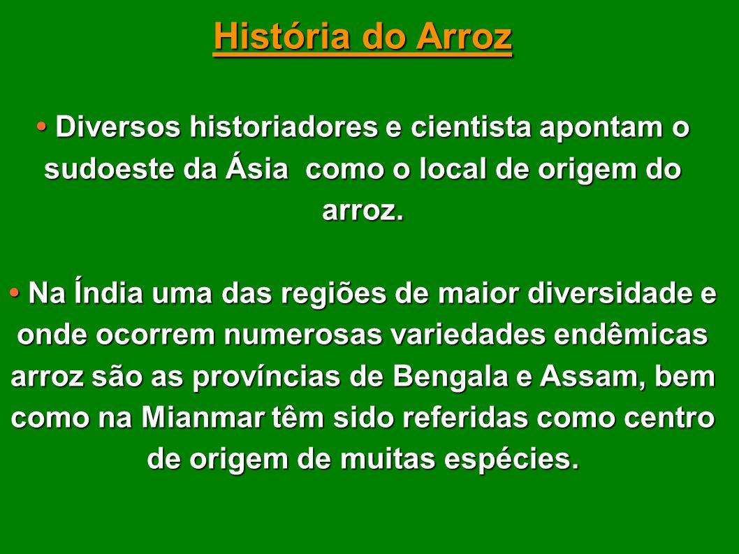História do Arroz • Diversos historiadores e cientista apontam o sudoeste da Ásia como o local de origem do arroz.