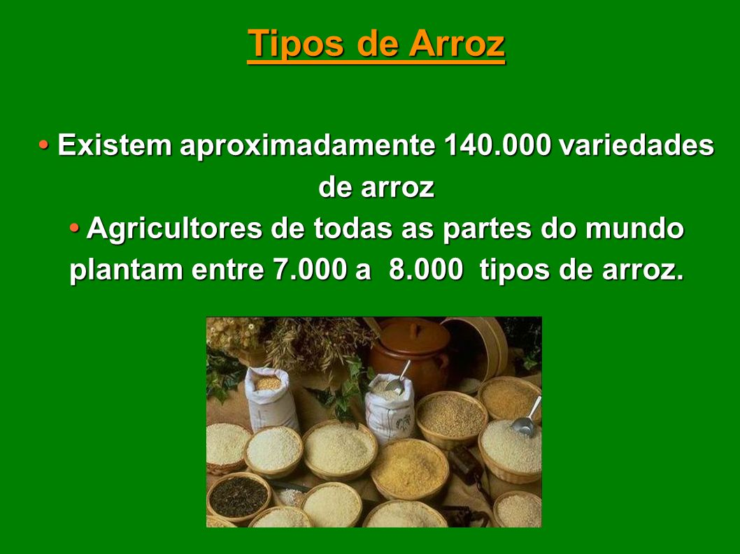 • Existem aproximadamente 140.000 variedades de arroz
