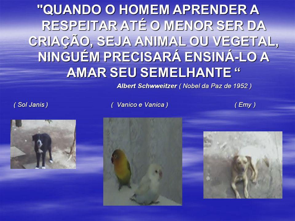 QUANDO O HOMEM APRENDER A RESPEITAR ATÉ O MENOR SER DA CRIAÇÃO, SEJA ANIMAL OU VEGETAL, NINGUÉM PRECISARÁ ENSINÁ-LO A AMAR SEU SEMELHANTE